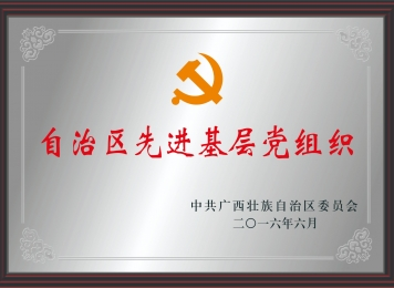 """荣获""""自治区先进基层党组织"""""""