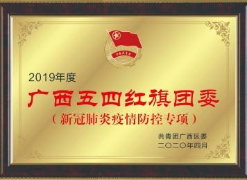 """院团委获2020年新冠疫情防控""""广西五四红旗团委"""""""
